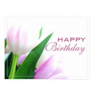Happy Birthday Postcard with Tulips Photo