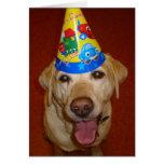 Happy Birthday Prima- Blank Inside Greeting Card