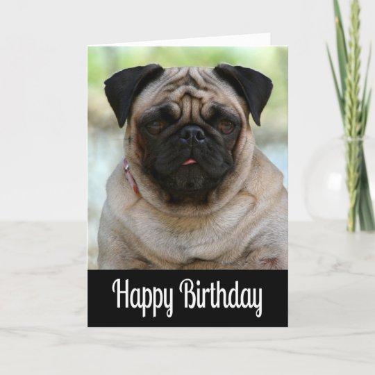 Happy Birthday Pug Puppy Dog Black Greeting Card