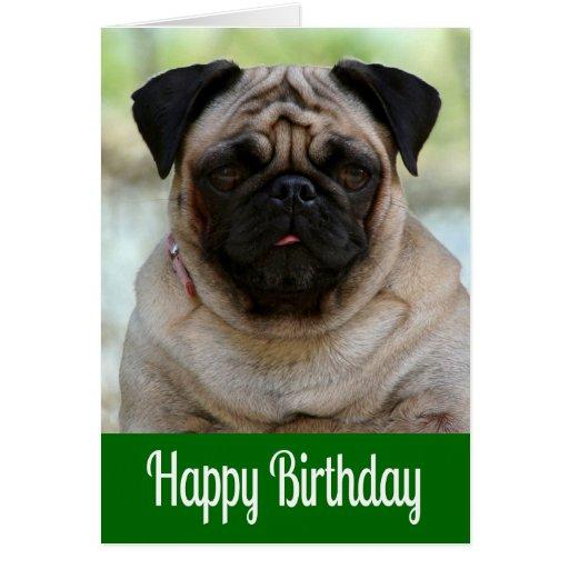 Happy Birthday Pug Puppy Dog Blue Valentineblognet