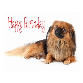 Happy Birthday Puppy Dog Red Postcard