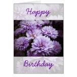 Happy Birthday - Purple Haze Chrysanthemums Greeting Cards