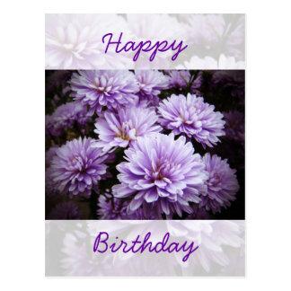 Happy Birthday - Purple Haze Chrysanthemums Postcard