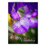 Happy Birthday (Purple Iris Card) - customizable