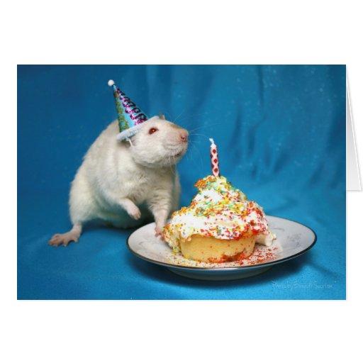 How To Make A Rat Cake