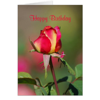 Happy Birthday Red and Yellow Rose Card