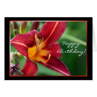 Happy Birthday Red Daylily Flower greeting card
