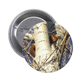 Happy Birthday Red Squirrel button