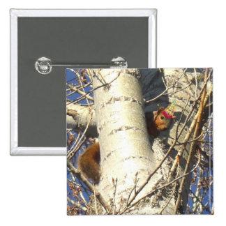 Happy Birthday Red Squirrel button