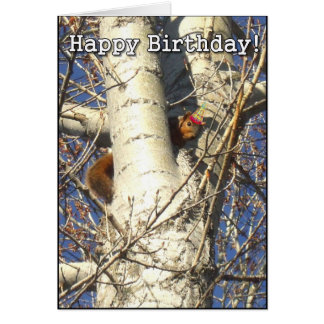 Happy Birthday Red Squirrel greeting card