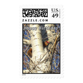 Happy Birthday Red Squirrel Postage Stamps