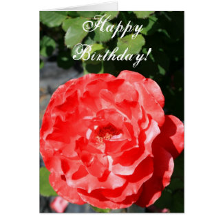 Happy Birthday Rose Greeting Card