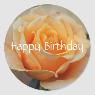 Happy Birthday, rose in peach Round Stickers