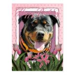 Happy Birthday - Rottweiler - SambaParTi Post Card