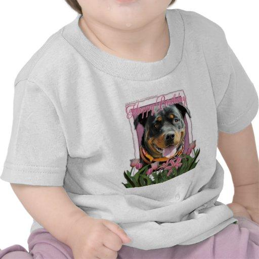Happy Birthday - Rottweiler - SambaParTi Tees