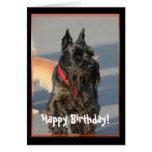 Happy Birthday Scottish Terrier Greeting Card