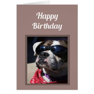 Happy Birthday Sexy Thing Fun Boxer Dog Greeting Card