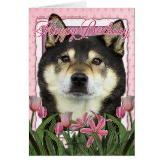 Happy Birthday - Shiba Inus - Yasha Card