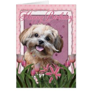 Happy Birthday - ShihPoo - Maggie Card