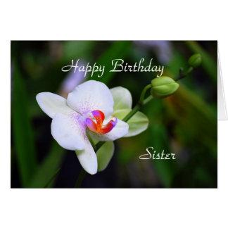 Happy Birthday Sister Phalaenopsis Orchid Card