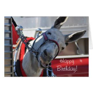 Happy Birthday Smiling Mule Greeting Card