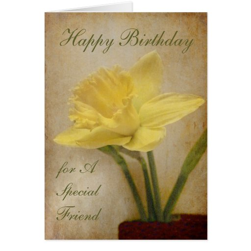 Happy Birthday, Special Friend Greeting Card