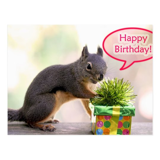 happy_birthday_squirrel_postcard-r262676