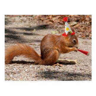 Happy Birthday Squirrel Postcard