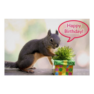 Happy Birthday Squirrel Poster