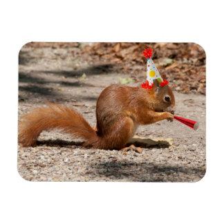 Happy Birthday Squirrel Rectangular Magnet