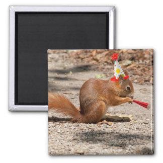 Happy Birthday Squirrel Refrigerator Magnets