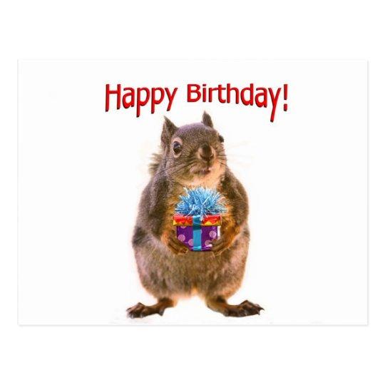Happy Birthday Squirrel With Present Postcard Zazzle Com