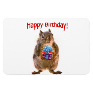 Happy Birthday Squirrel with Present Flexible Magnets