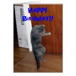 Happy Birthday!! Stationery Note Card