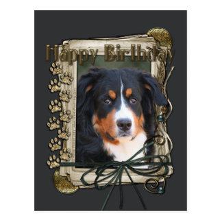 Happy Birthday - Stone Paws - Bernese Mountain Dog Postcard