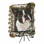 Happy Birthday - Stone Paws - Boston Terrier Acrylic Cut Outs