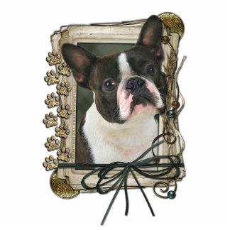 Happy Birthday - Stone Paws - Boston Terrier Statuette