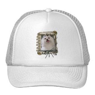 Happy Birthday - Stone Paws - Maltese Trucker Hat