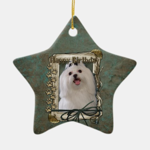 Happy Birthday - Stone Paws - Maltese Christmas Ornament