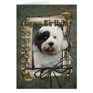 Happy Birthday - Stone Paws - Tibetan Terrier Card