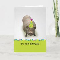 Happy Birthday, Suey't Party Pig Greeting Card