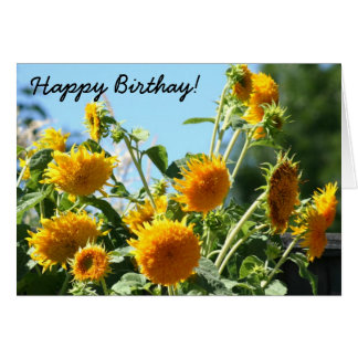 Happy Birthday Sunflowers greeting card