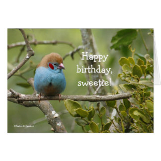 Happy Birthday, Sweetie Greeting Card