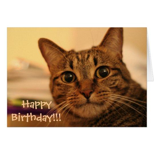 Birthday Orange Cat: Happy Birthday Tabby Cat Card