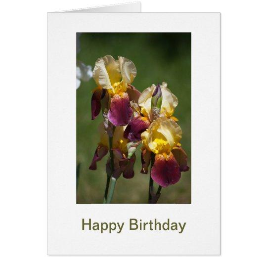 Happy Birthday to a Beautiful Lady Card