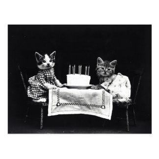 Happy Birthday to Meow | Kitties with Cake Postcard