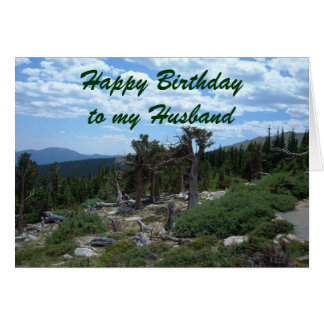 Happy Birthday to my Husband Card