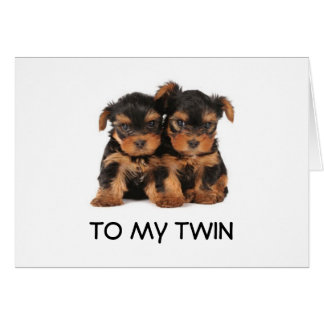 """HAPPY BIRTHDAY TO THE """"BEST TWIN EVER"""" MINE CARD"""