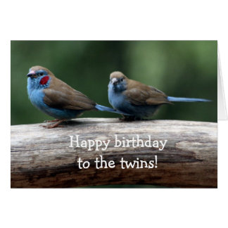 Happy birthday to the twins! card