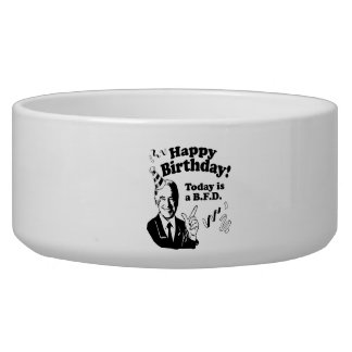HAPPY BIRTHDAY TODAY IS A BFD.png Dog Water Bowl